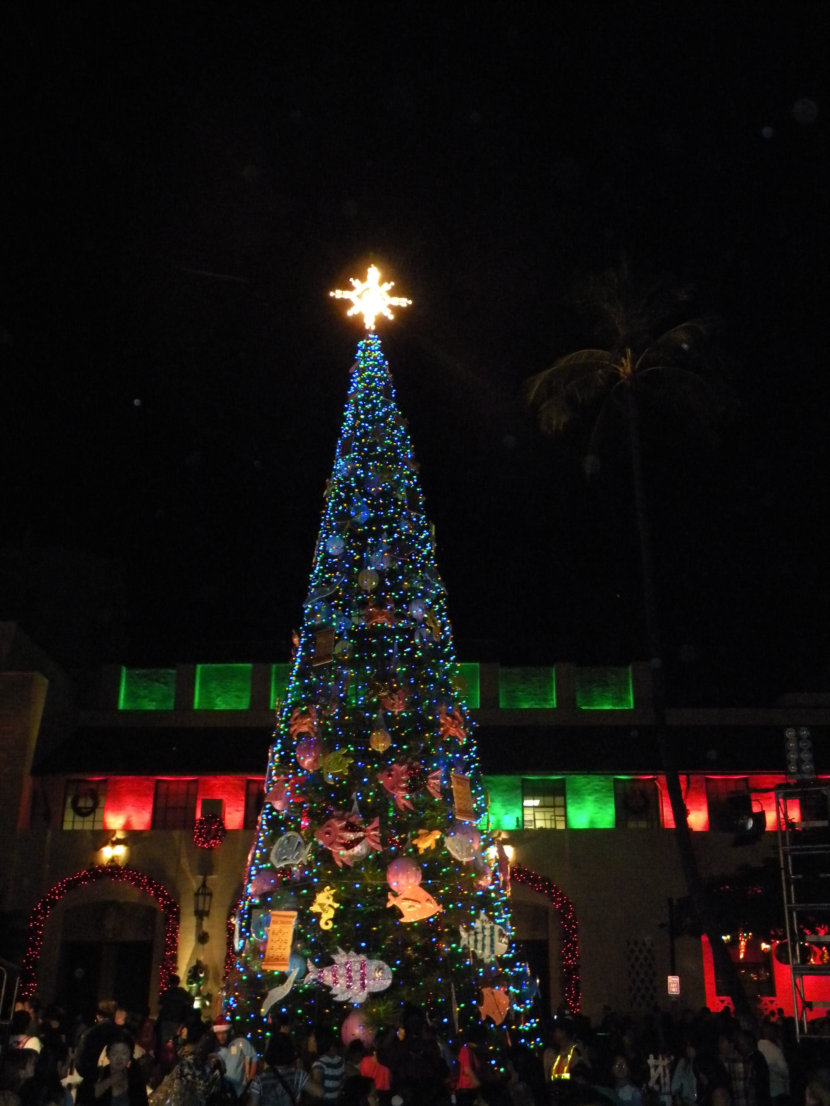 the honolulu city lights will be featured until january 01 2012 for free and it is open to the public on a daily basis until then