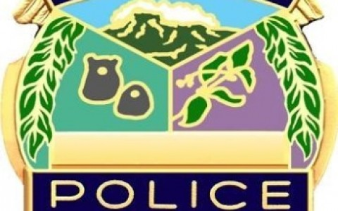 Kauai-Police-Department-badge--generic----27846257