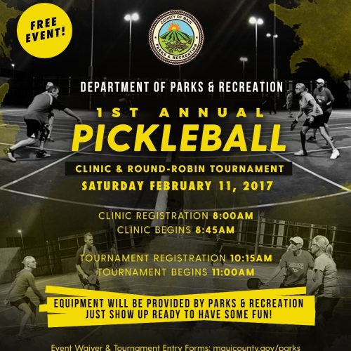 PickleBall_Tournament_2017