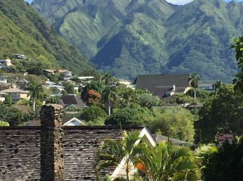 Manoa Valley photo contest