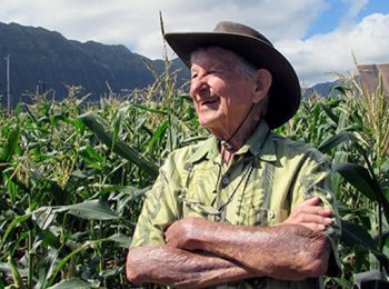 In memoriam: Horticulturist James Brewbaker, the 'King of Corn'